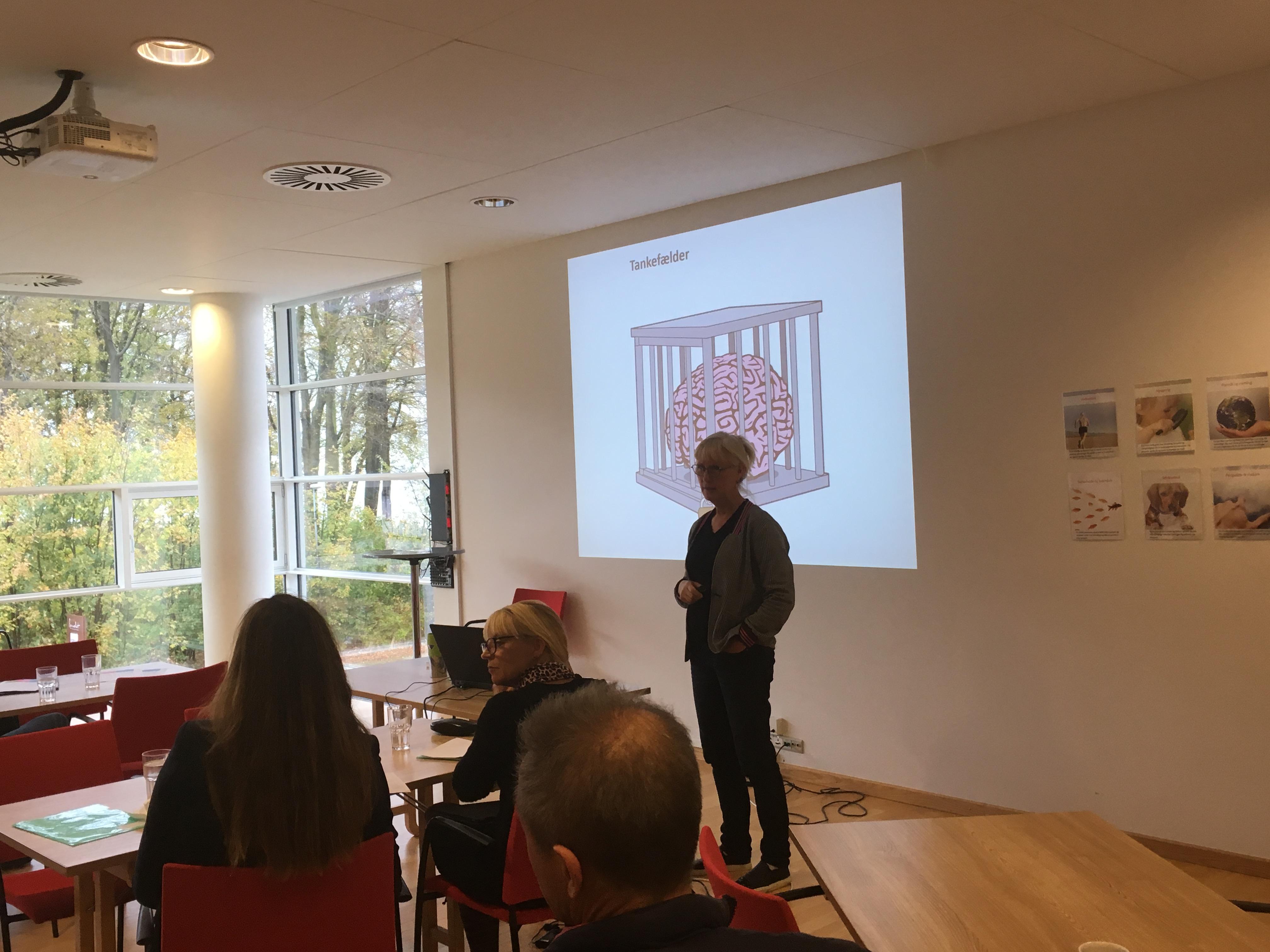 WS 6 Marianne Tolstrup ressourcebaseret vejledning